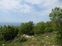 Продается земельный участок 20 сот в Гаспре.