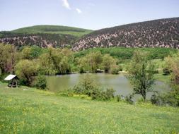 Участки возле озера в Байдарской долине.