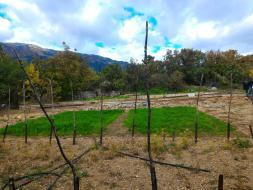 Земельный участок в Гаспре