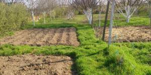 Продам землю от собственника 10 соток город Евпатория поселок городского типа Новоозерное.